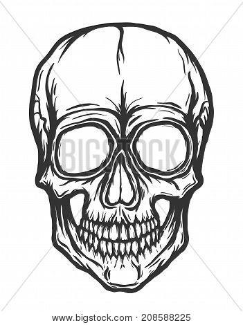 Skull vector isolated on white background. Handdrawn illustration.