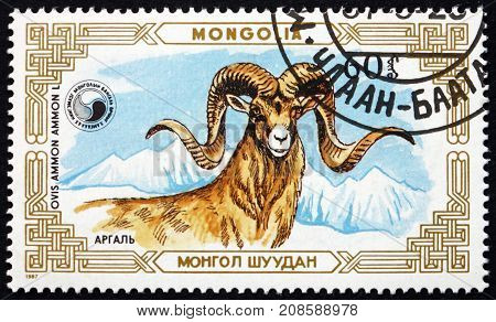 MONGOLIA - CIRCA 1987: a stamp printed in Mongolia shows Mountain Sheep Ovis Ammon Close-up of Head circa 1987