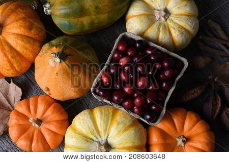Autumn Still Life: Top view of an assortment of Fall decorative gourds, squash and pumpkins around a basket of fresh cranberries.