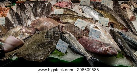 Fish for sale in a market in Barcelona