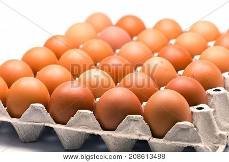 Eggs on paper tray isolate on white background