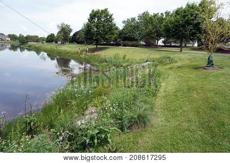 JOLIET, ILLINOIS / UNITED STATES - JUNE 3, 2017: Children enjoy fishing from the shore of a small lake in the Wesmere Country Club subdivision of Joliet.