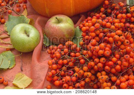 Autumn still life with pumpkins apples and rowan