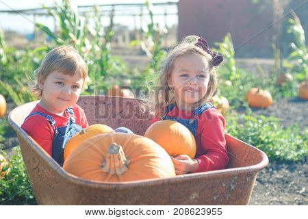 Little sisters in jeans overalls sitting inside old wheelbarrow at farm field pumpkin patch, smiling happily