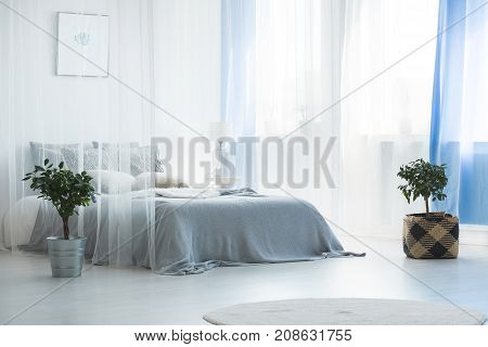 Bed Covered By Canopy