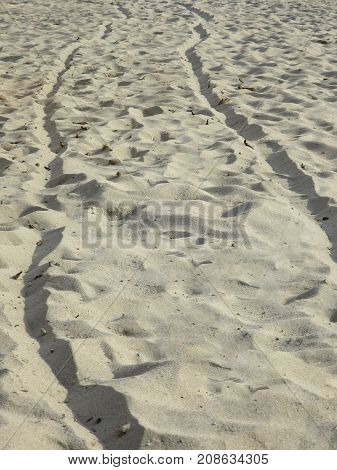 signs strips of passage on the sand