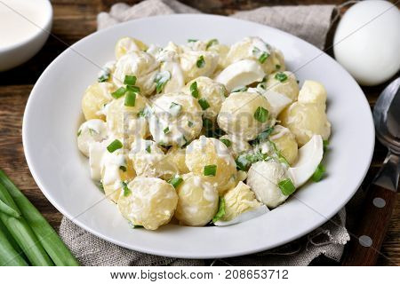 Homemade potato salad with eggs and green onion dressing with yoghurt and mayonnaise. Country style