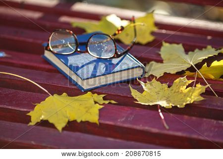 A Book With Colored Leaves Embedded In It Lies On A Bench In The Park In Autumn