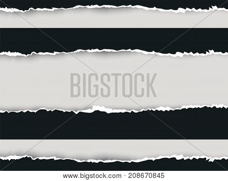 Ripped Paper Long Double Vector