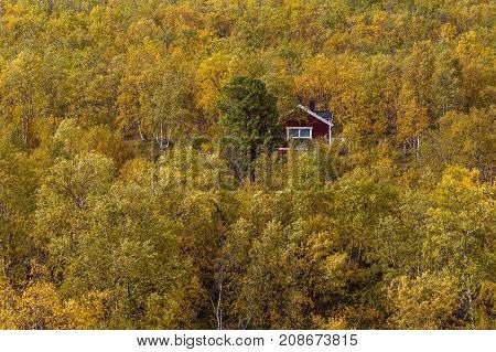 LAPLAND, SWEDEN ON SEPTEMBER 11. View of a colorful mountain slop and a red, wooden building, cabin on September 11, 2017 in Lapland, Sweden. Birches in yellow and orange. Editorial use.