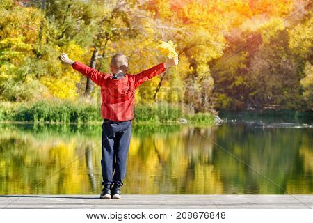 Boy In Red Jacket Standing On The Dock With Leaves In His Hand. Autumn, Sunny. View From The Back