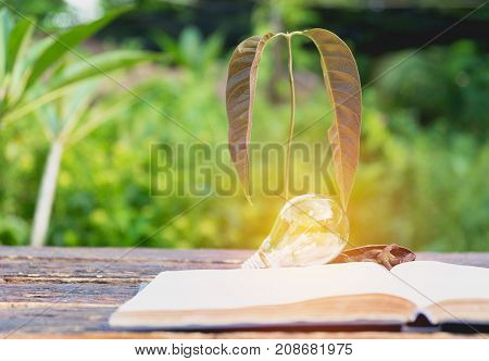 Book with glowing light bulb over it on wooden table and nature background. Knowledge education concept.