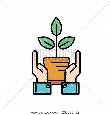 ecology plant with flowerpot and leaves with hands vector illustration