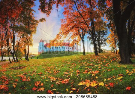Autumn evening in park.  castle complex in autumn evening. Colorful autumn foliage on grass in perk.