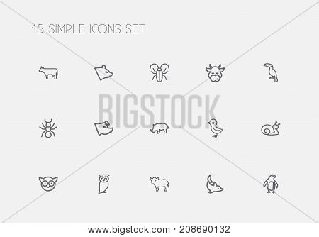 Set Of 15 Editable Zoology Outline Icons. Includes Symbols Such As Bird, Escargot, Diver And More