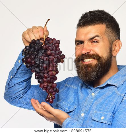 Viticulture And Gardening Concept. Winegrower With Tricky Smiling Face