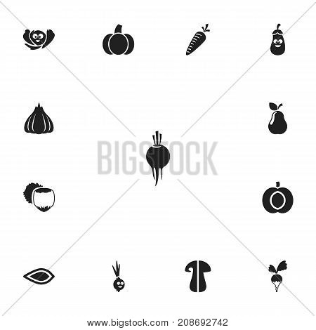 Set Of 13 Editable Cooking Icons. Includes Symbols Such As Eggplant, Turnip, Nectarine And More