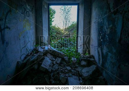 Plants  invades a house in ruins, as times goes by.