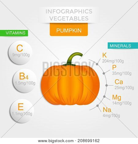 Healthy vegetables infographics with pumpkin vitamins and minerals. Quality vector illustration about diet eco food benefits of vegan and nutrition concept.