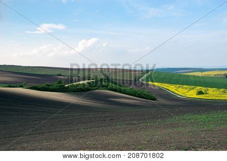 Very beautiful landscapes on south Moravia so called Czech Tuscany. Amazing colors in almost every season and great lines and curves.
