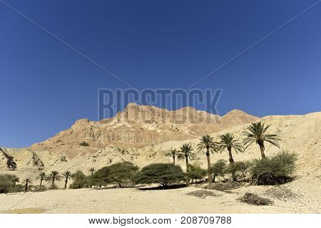 Entrance in Ein Gedi National park Israel