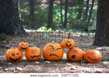Halloween pumpkins in the woods