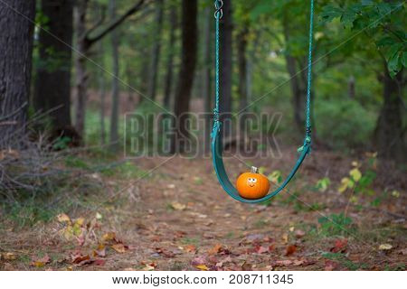 Cute little pumpkin on a swing