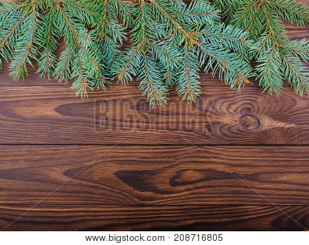 Winter concept of a green fir tree on a brown wooden background