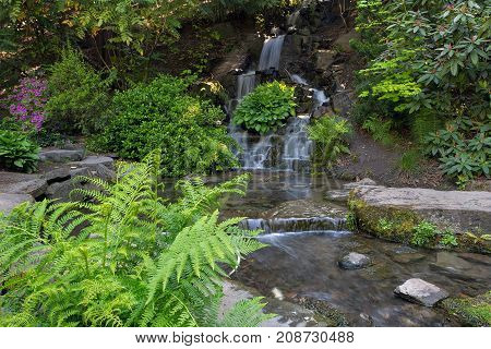 Waterfall by Ferns at Crystal Springs Garden in Portland Oregon during Spring Season