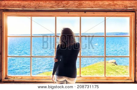 Back of one lonely alone young woman standing against large glass window looking at peaceful ocean view flying gannet seagull sea birds cliff sun sunrise sunset