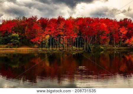 Nice Autumn colors in New Brunswick, Canada