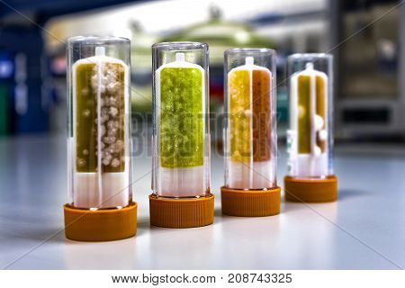 Check the fluid for presence of bacteria and fungi. Visual inspection.