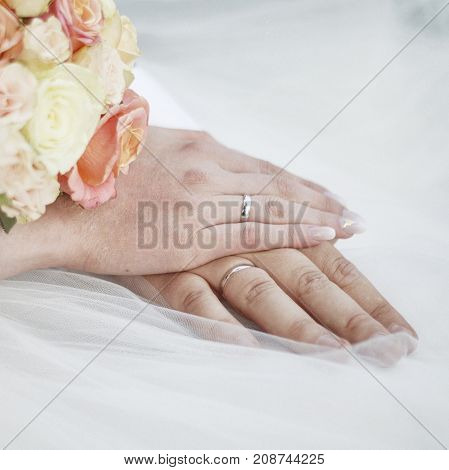 Newlyweds Hands With Wedding Rings.