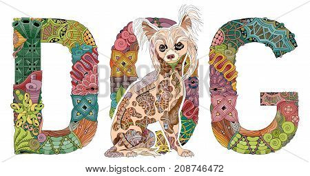 Hand-painted art design. Hand drawn illustration word DOG with a figure of a dog for t-shirt and other decoration