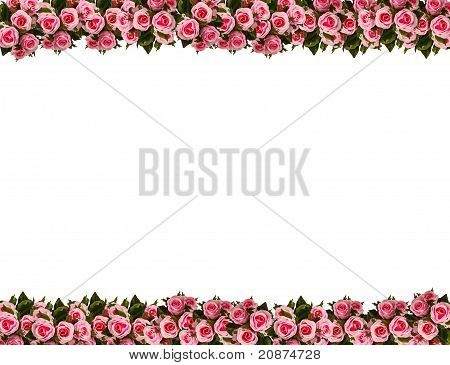Picture Frame By Pink Roses