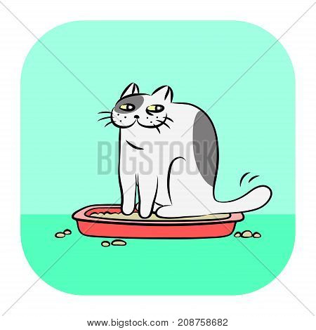 Cute tomcat in red litter box vector illustration on green background. Cartoon funny character pet for web icon.