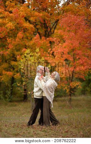 portrait of beautiful caucasian senior couple dancing  in park