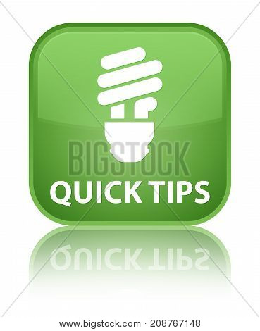 Quick Tips (bulb Icon) Special Soft Green Square Button
