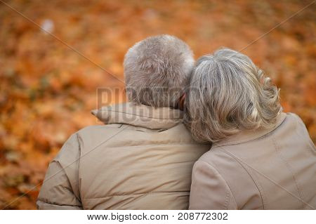 Rear view of beautiful caucasian senior couple hugging   in the park