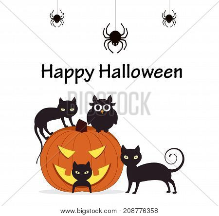 Halloween Background. Pumpkin with cats owl and spiders.