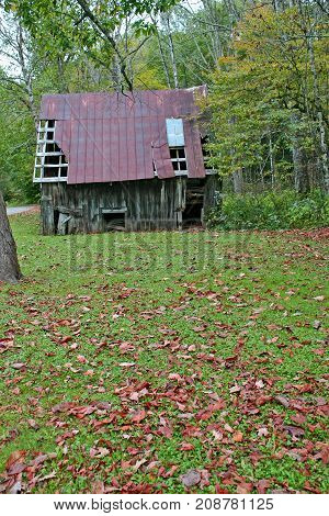 fallen autumn leaves in front of a collapsing barn