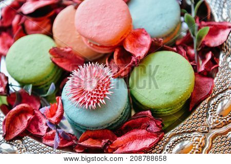 Blurred colorful macaroons in rose petals. Art decor composition. Macro sweet desserts on silver tray with pink, red floral petals for posters, prints, food calendars, shop, web, covers, design, cafe