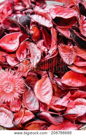 Beautiful colorful rose petals. Art decor composition. Macro floral red, pink dryed petals for posters, prints, calendars, shop, web, covers, design, 14 february, cards. Blossom, beauty of flowering.