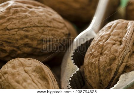 close up of a pool of walnuts and a metal nutcracker.