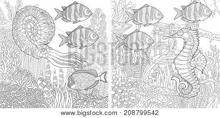Coloring pages of tropical fishes, nautilus and seahorse. Freehand sketch drawing for adult antistress colouring book with doodle and zentangle elements.
