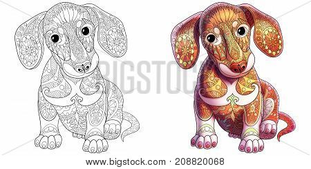 Collection of two dachshund dogs - monochrome and colored versions. Freehand sketch drawing for adult antistress coloring book with doodle and zentangle elements.