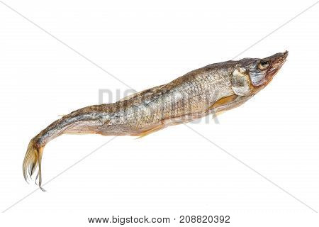 Dried smelt candle fish fish isolated on white background.