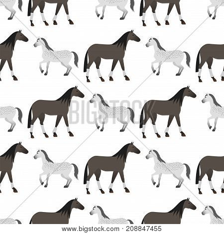 Set of horse pony stallion seamless pattern breeds color farm equestrian animal characters vector illustration. Mammal silhouette domestic animal cartoon pet design.