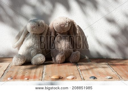 Two teddy bears sitting in the shade