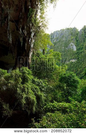 Cave entrance and forest in Niah national park Borneo Malaysia